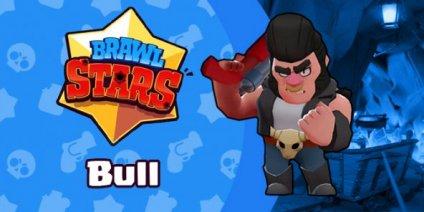 bull brawler